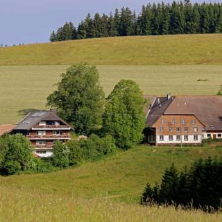 Ferienwohnung mit Garten - Breitnau