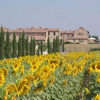 Beccanella villa - Asciano