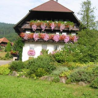Haus Schneider, Ferienwohnung Talblick - Gutach