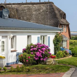 Haus Wattwiese, Wohnung Abendsonne - Norddorf