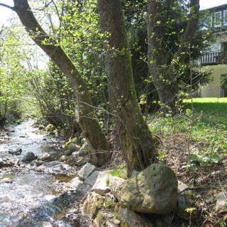 Ferienwohnung am Wurmberg 5 - Braunlage