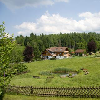 Haus Heidi, Ferienwohnung Teichblick - Altenau