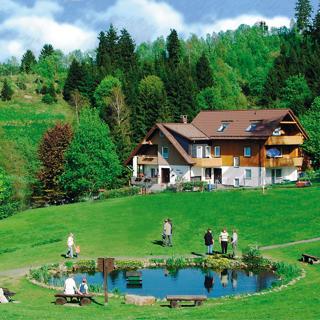 Haus Heidi, Ferienwohnung Schwalbennest - Altenau