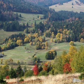 B5 Ferienwohnung für 2 Personen Haus Albmatte Menzenschwand Schwarzwald - St. Blasien
