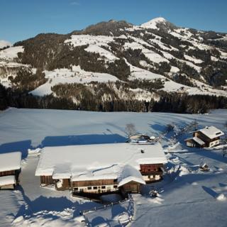 Urlaub am Bio-Bauernhof Achrainer-Moosen Alpenrose - Hopfgarten im Brixental