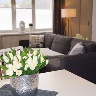 Villa Ratskopf - Executive Suite - Wernigerode