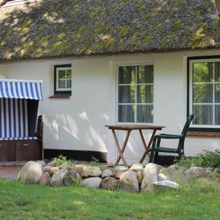 Familienzimmer Gartenzimmer - St. Peter-Ording