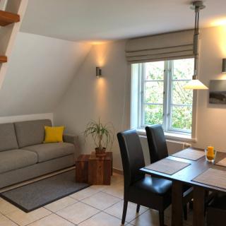 Haus Wattperle Wohnung - Lachmöwe - Munkmarsch