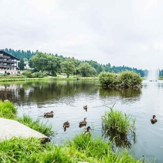 Haus Vier Jahreszeiten am See -  HS 579 S - Hahnenklee
