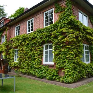 Haus Asmussen Whg. 4 - Wyk