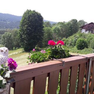 Ferienwohnung-Panoramablick -4 - Bodenmais