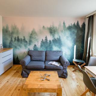 Auszeit-im-Harz Haus 4 Wohnung 2 - Braunlage
