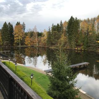 Renovierte Ferienwohnung am Waldsee - Hasselfelde
