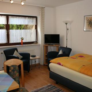 Ferienhaus Evelyn - 1-Zimmer-Apartment - Hinterzarten