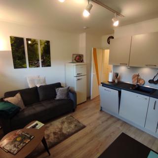 GESUND WOHNEN Vier Sterne Haus, Apartment Nr. 3A - Braunlage