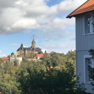 Sweet Harz Apartments - Sternchen - - Wernigerode