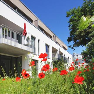 Dünenresort Binz FeWo  422: 2-Raum, 2 Pers + Kleinkind, Balkon kH - Binz