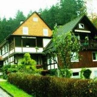 Haus Waldfrieden, Wohnung 2 - Bad Grund