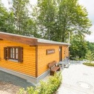5-Sterne Ferienhaus mit WLAN, Kamin, Sauna - Haus Sonnenberg - - St Andreasberg