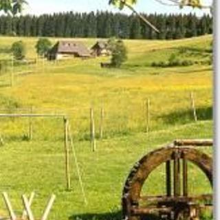 Bauernhof Kleinklausenhof Wohnung 60qm - Vöhrenbach